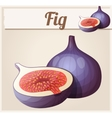 Fig fruit Cartoon icon vector image vector image