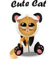 cat in panda costum vector image