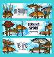 fishes sketch banners fishing sport market vector image vector image