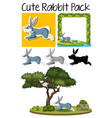 a pack of rabbit vector image vector image