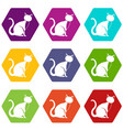 black cat icon set color hexahedron vector image vector image