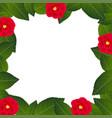 red camellia flower frame border vector image