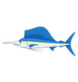 sailfish fish on a white background vector image