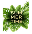 summer poster with tropical palm leaf vector image vector image