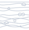 136 rope a3 vector image vector image