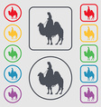 Camel icon sign symbol on the Round and square vector image