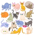 Cat icons set cartoon style vector image