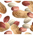 peanuts in realistic style organic snack close up vector image