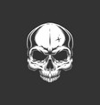 vintage skull without jaw vector image vector image