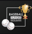 baseball sport ball and trophy vector image vector image