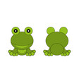 cartoon frog view from front and back vector image