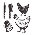 chicken butchery objects or design elements vector image