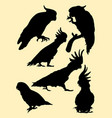 cockatoo birds animal silhouette vector image vector image