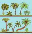 collection palm trees cartooning flat vector image