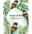 Colorful birds tropic card watercolor