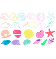 sea shells vector image