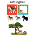 a pack of cute dog vector image vector image