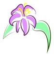 beautiful purple flower on white background vector image vector image