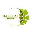 oak leaf logo design template vector image