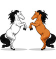 Prancing Stallion or Horse vector image vector image