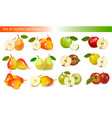 set of pears and apples vector image vector image