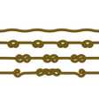 set ropes with knots vector image