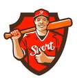 sport logo baseball or cricket icon vector image