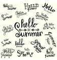 inscription hello summer handwritten lettering vector image