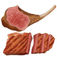 grilled meat on white background vector image vector image