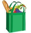 groceries vector image vector image