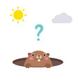 groundhog looking out of his hole flat vector image