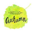 Fall banner with textured brush lettering vector image vector image