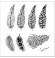 Hand drawn bird feathers Boho style vector image vector image