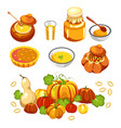 thanksgiving holiday food pumpkin dishes isolated vector image