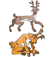 Yellow deer and brown deer vector image vector image