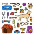 cartoon dog accessory grooming canine animal pet vector image