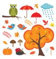 Colorful Autumn Set vector image