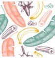 banana hand drawn background banana flower fruits vector image vector image