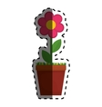 Beautiful flower plant vector image vector image