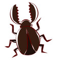 brown beetle bug on white background vector image vector image