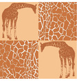 Giraffe patterns for wallpaper vector image vector image