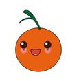 kawaii citrus orange fruit vitamins nutrition vector image vector image