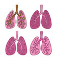 set of sketch color lungs isolated on white vector image vector image