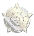 war of the roses metal icon vector image vector image