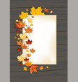 fall leaves on dark background and card vector image vector image