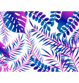 summer tropical design with palm leaves vector image vector image