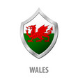 wales flag on metal shiny shield vector image