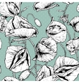 Monochrome Seamless floral background with poppy vector image