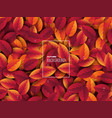 3d realistic autumn leaves with water drop vector image