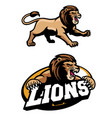 angry lion mascot set vector image
